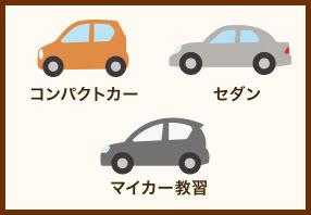 教習車のタイプ